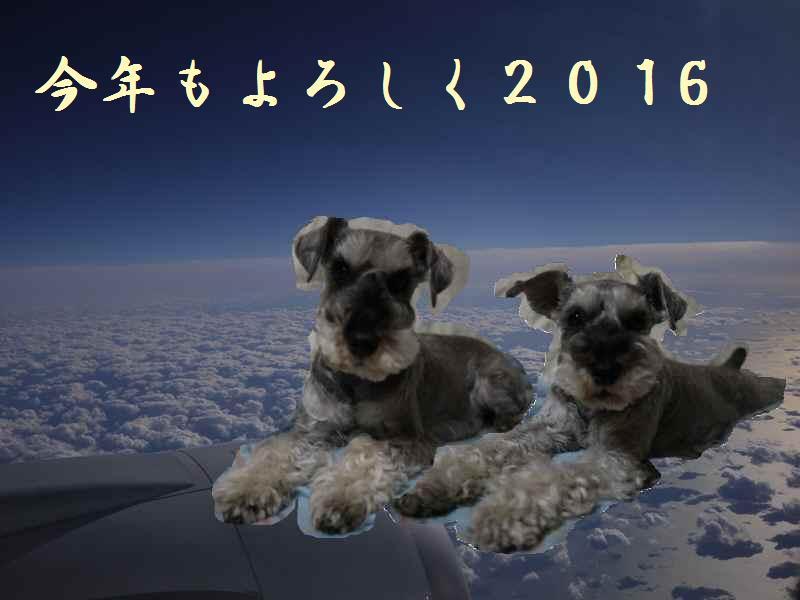 2016nenshi